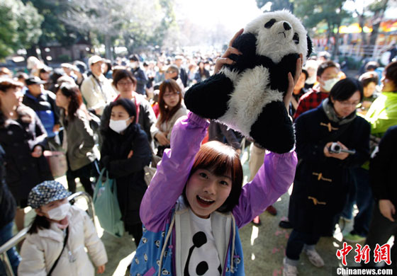 Giant panda debut at Ueno Zoo